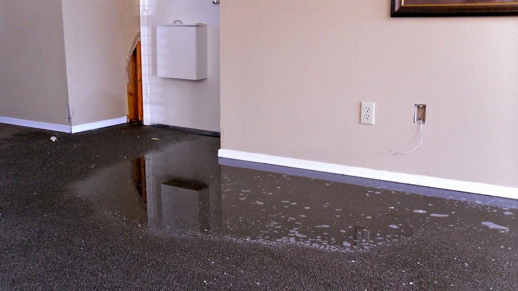 Secagem de carpete molhado