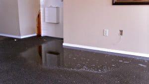 Secagem de carpete