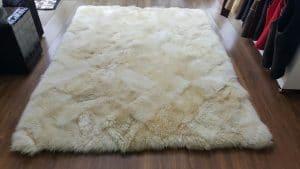 Limpeza de tapete especial