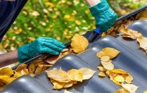 Empresa Serviços Limpeza de Telhado