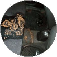 limpeza interna de veículos